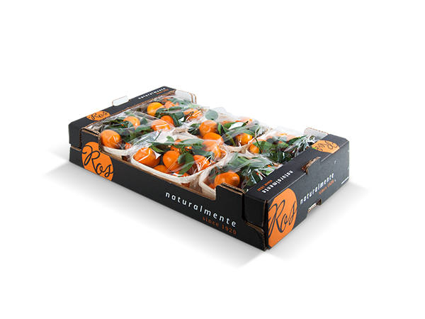 Clementines with leaf 60x40x11cm – 6 flowpack x 1000 gr