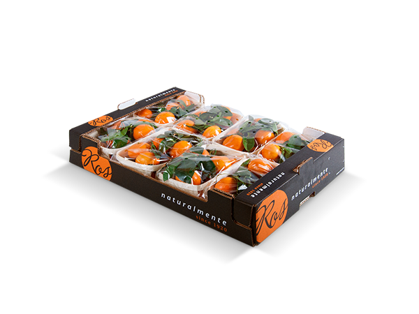Clementines with leaf 60x40x11cm – 8 flowpack x 800 gr