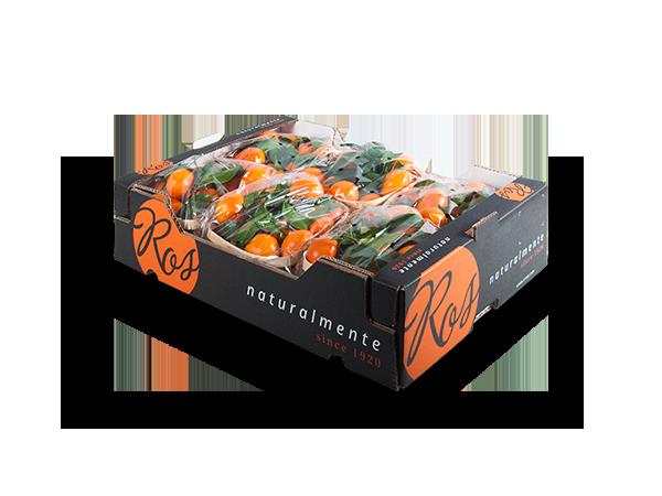 Clementinas con hoja 60x40x14cm – 6 flowpack x 1500 gr