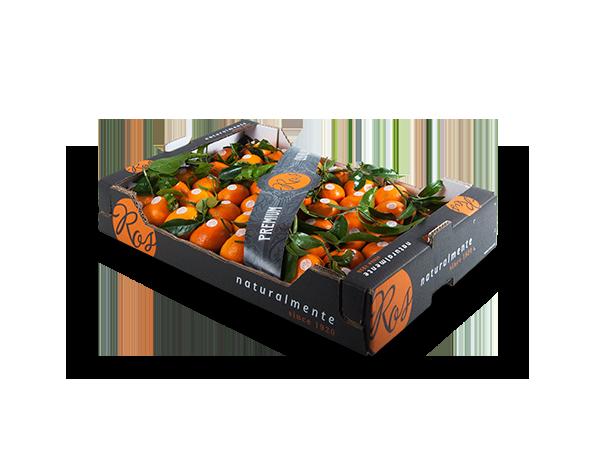Clementinas con hoja alveolo 60x40x10 cm