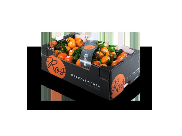 Clementinas con hoja granel 50x30x18 cm – 10kg