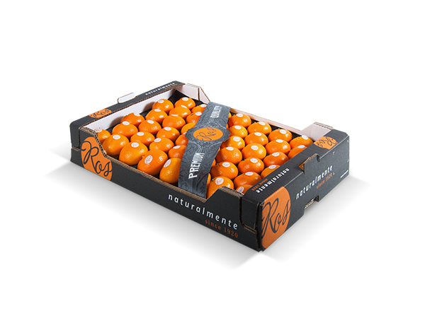 Clementines without leaf alveolus plastic tray 60x40x10 cm