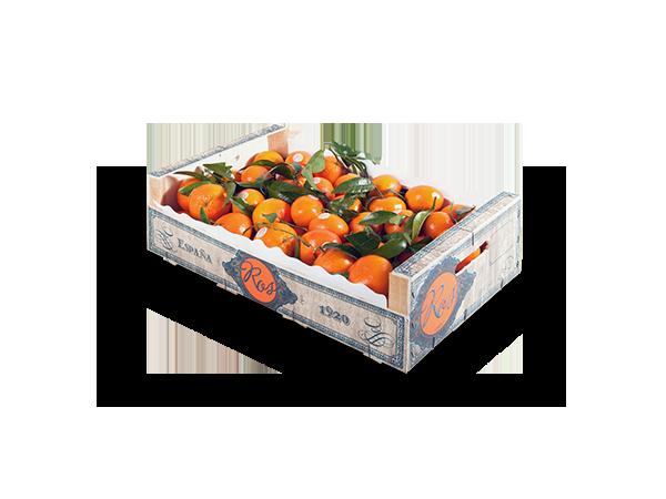 Clementinas con hoja 50x30x13 cm