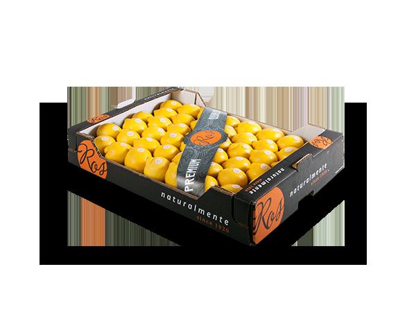 limones 60x40x10 cm